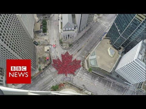 Canada Day: Time-lapse captures 'largest living maple leaf'- BBC News