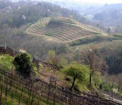 Recensione Vino Ramandolo: la gioia del Friuli