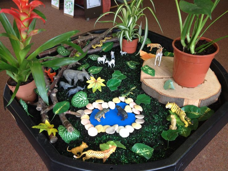 Jungle small world