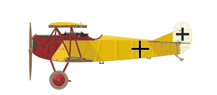Fokker D.VII of Oblt. Lothar von Richthofen (40 victories), of Jasta 11 during mid-1918 Although the elder Richthofen brother didn't survive long enough to take ownership of a Fokker D-VII, Lothar scored his final victories in this BMW-engined version (the last a pair of Sopwith Camels, of 98 & 209 Squadrons, on 12 August 1918). Severely wounded during this fight (for the third time), he had not recovered by the end of the war. Lothar died in a civil aviation accident on 4 July 1922.