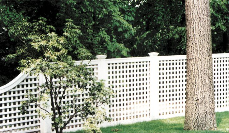 Best 25 Lattice Fence Ideas On Pinterest Patio Ideas