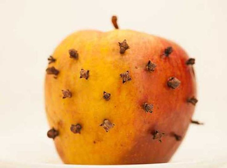 Find Out How To Get Rid Of Flies Outdoors. If Those Pesky Pests Are Ruining