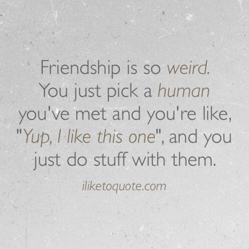 Funny Friendship Day Quotes: Best 25+ Friendship Sayings Ideas On Pinterest