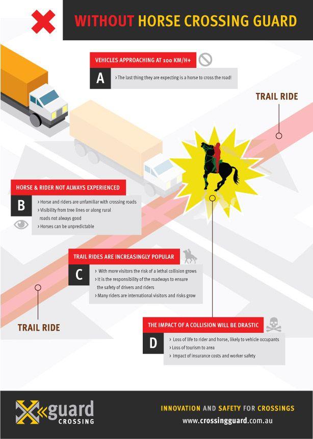 Xguard Infographic-horse-web-01.jpg