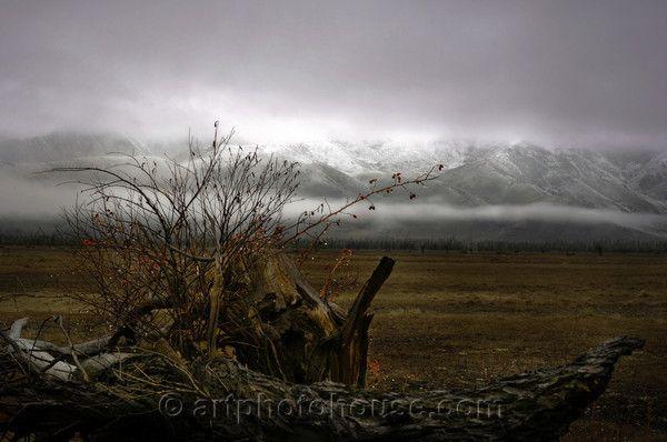 Arthurs Pass, South Island, NZ