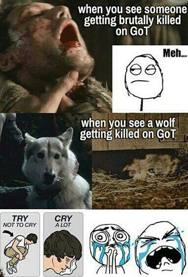 Truth...with exception of the red wedding but a wolf died then too so... :/