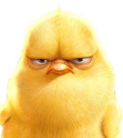 Картинка цыпленка прикольная, открытки новым годом