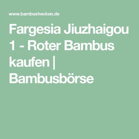 Fargesia Jiuzhaigou 1 - Roter Bambus kaufen   Bambusbörse