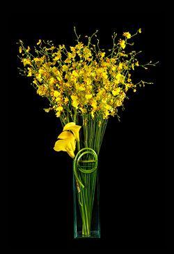 Ovando Floral and Event Design - NYC