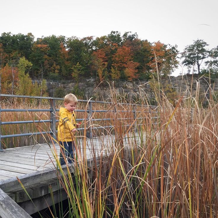 Places To Visit In Milton Canada: 17 Best Things To Do In Milton, Ontario Images On