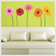 Gerber Daisies Giant Appliques    Dimensions: 25 elements    It's springtime all year round with this set of giant multi-color Gerber daisies. Add a splash of color--and fun--to any wall. Great for living rooms, bedrooms, kitchens, bathrooms, or even the office. These wall stickers are truly multi-purpose! Great for teens and adults alike.