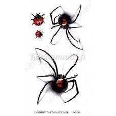 3D Hämähäkki siirtotatuointi