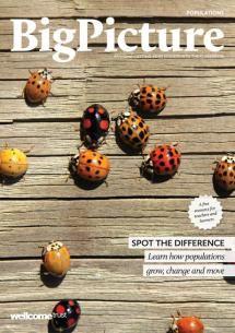 Εξαιρετικό εκπαιδευτικό περιοδικό από τον οργανισμό Wellcome Trust. Παρουσιάζει τις σύγχρονες εξελίξεις των βιοεπιστημών καθώς και τις ηθικές και κοινωνικές προεκτάσεις τους. Δίνει τη δυνατότητα εγγραφής και δωρεάν αποστολής, ταχυδρομικά ή με email, των τευχών του.