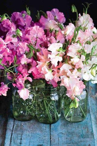 How To Arrange Flowers The Flower Recipe Book Pretty Simple (BridesMagazine.co.uk) (BridesMagazine.co.uk)