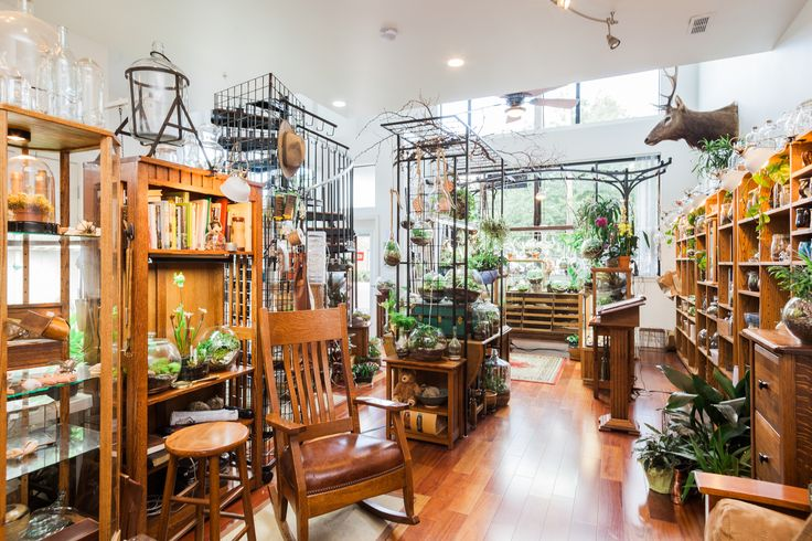Roosevelt's Terrariums PDX: Have a seat and a cup of coffee while we plant your new terrarium.