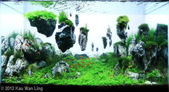 It might look like the islands are simply floating in midair (or midwater), but they're actually connected to the aquarium with hard-to-see support beams.  Unfortunately, it would be practically impossible to create a naturally buoyant formation.    http://www.okeanosgroup.com/blog/aquariums/think-floating-islands-are-only-in-sci-fi-movies-think-again-with-custom-aquascape/