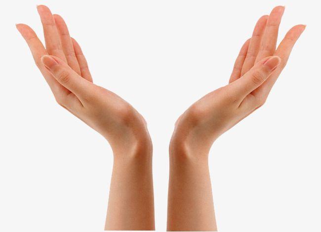 Mains En L Air Les Mains En L Air De Longues Mains Ouvre La Main Fichier Png Et Psd Pour Le Telechargement Libre Hand Pose Wrinkles Hands Hand Clipart