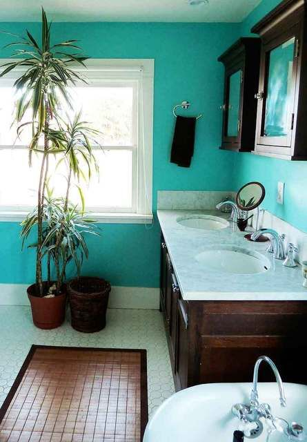 Bathroom Ideas Turquoise 155 best breezy turquoise decor images on pinterest | home, aqua