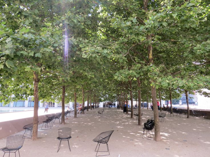 gravel plaza planted with trees - Google Search
