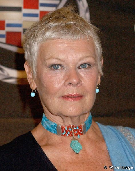 """""""I think you should take your job seriously, but not yourself - that is the best combination."""" ~ Judi Dench"""