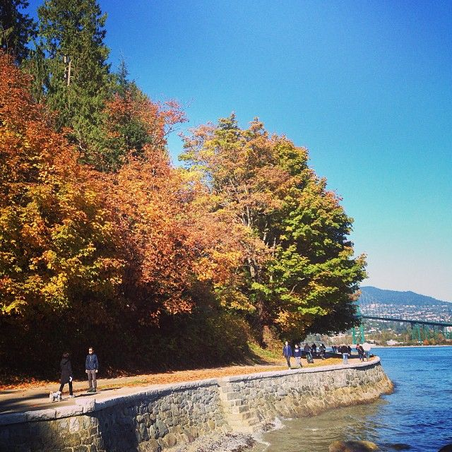 Scenic walk around Stanley Park in the Fall.
