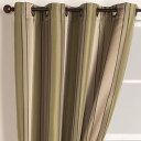 drapes - olive from World Market - silky with grommet. on sale $25 per.  extra long also available.