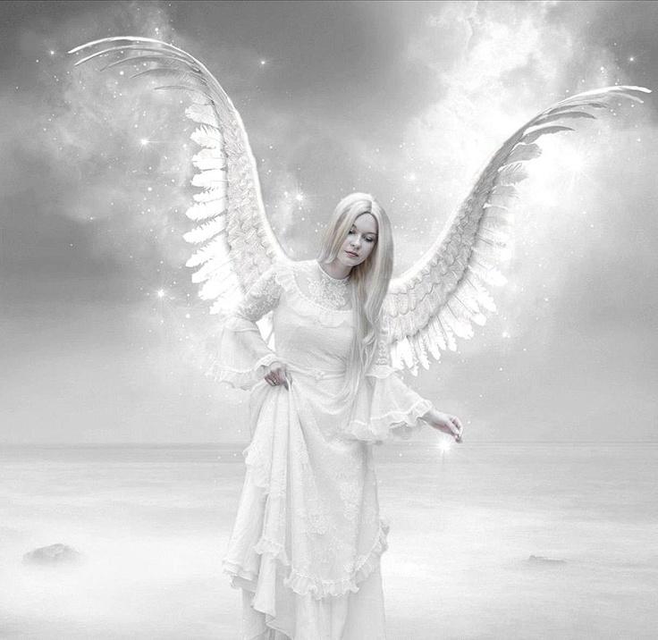 открывает фото белого ангела также может