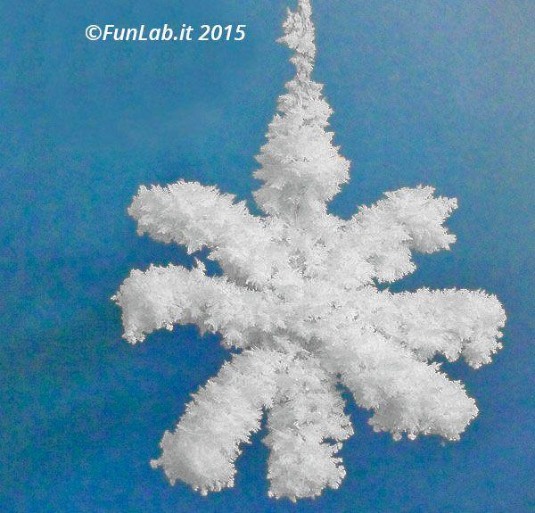Fiocchi di neve di cristalli fai da te