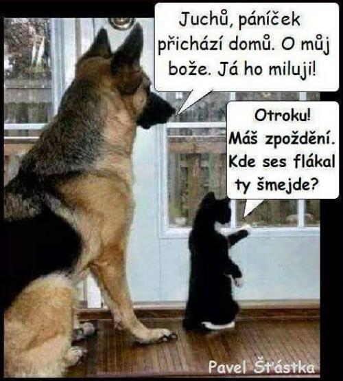 Já ho miluji | Loupak.cz