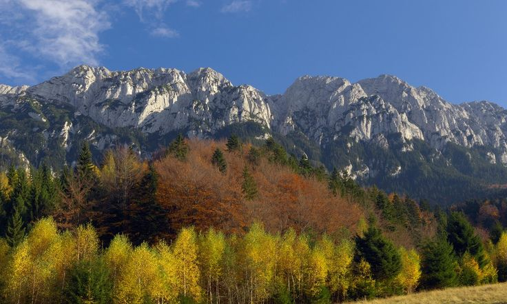 From hiking to bear watching to braving Dracula's castle alone, Romania's wide open spaces are an adventure playground