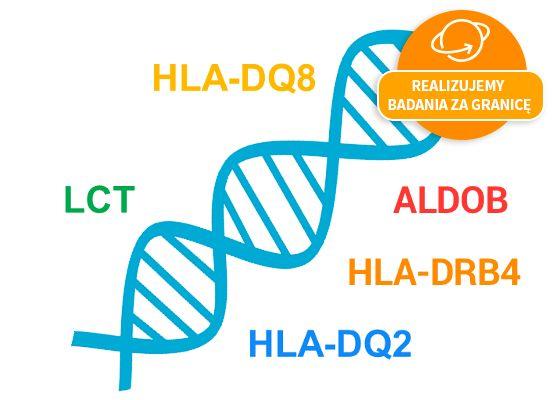 Pakiet DNA Nietolerancje pokarmowe