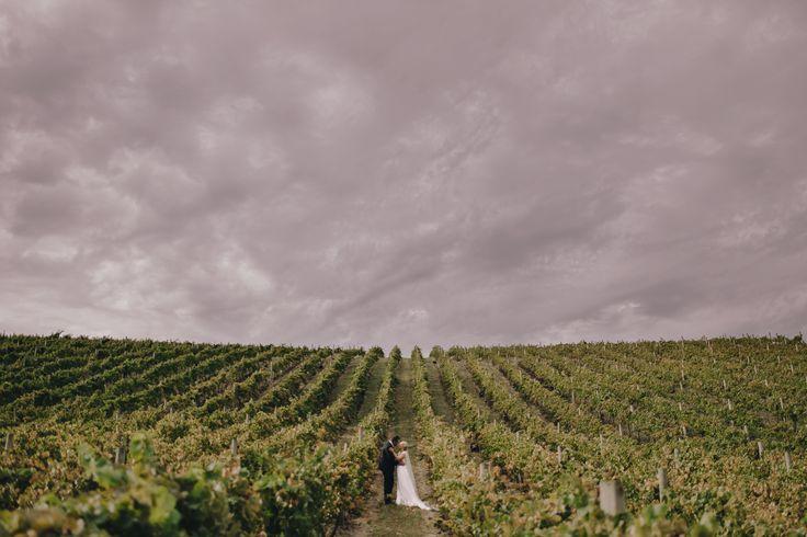 #winerywedding #weddingphoto #weddingphotographer #bride #bridalstyle #weddinginspo #weddingstyle #wedding #australianwedding #australianbride #brideinspo