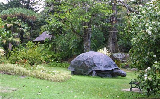 Seychelles National Botanical Gardens tour with Antilog Vacations at Mahe Seychelles