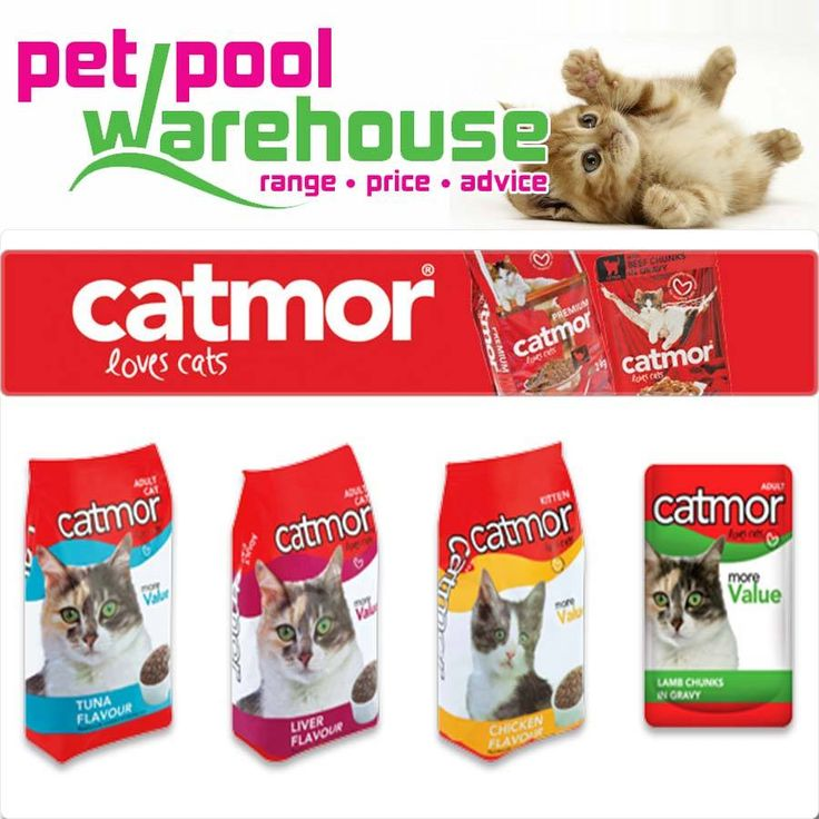 The Catmor range of protein-packed dry and wet foods contains all the vitamins, minerals and wholesome ingredients your cat needs to stay in peak condition and available from Pet Pool Warehouse Knysna #lovecats #catmor