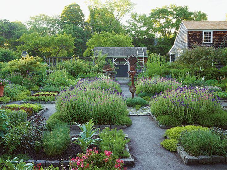 736 best Kitchen Garden images on Pinterest Edible garden
