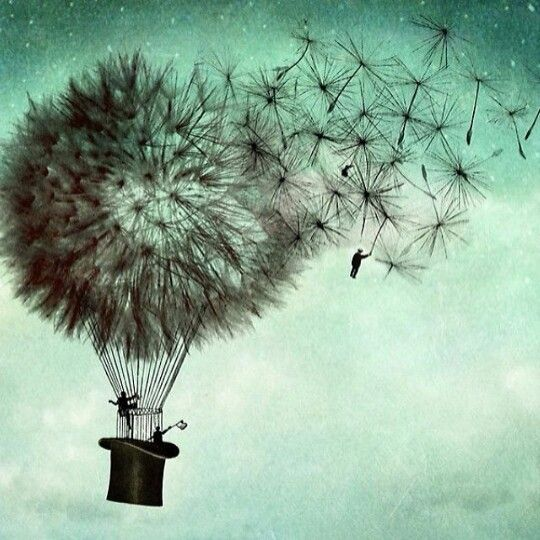 Dandelion hot air balloon