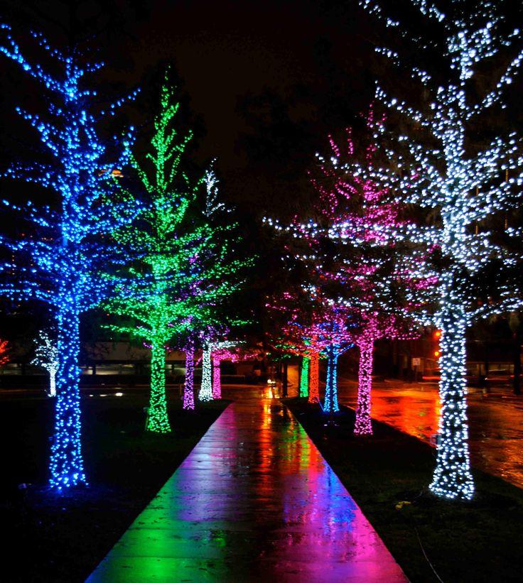 martinis christmas lights - Coolest Christmas Lights