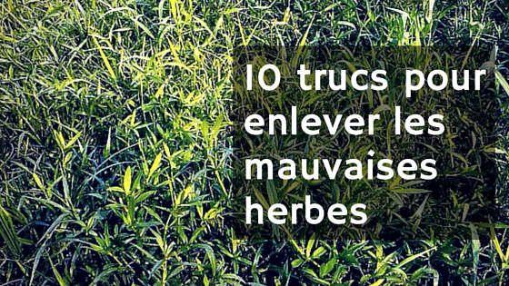 Enlever les mauvaises herbes astuce du jour pinterest for Enlever les odeurs du frigo