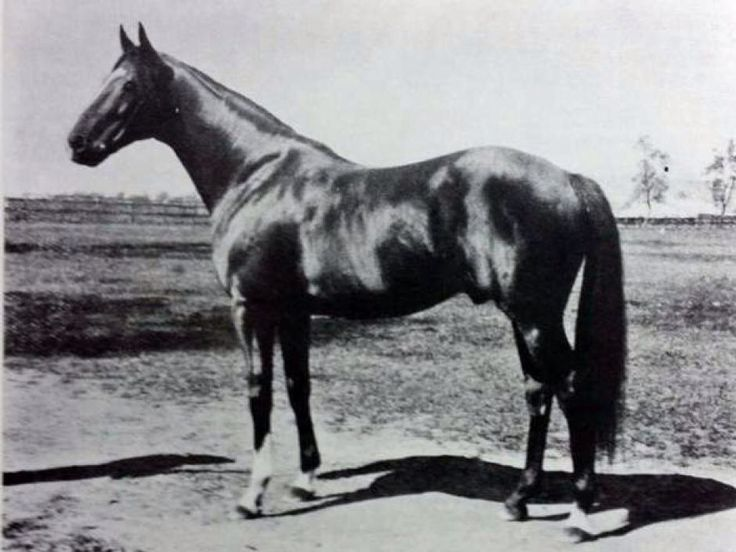 1909 Prince Foote