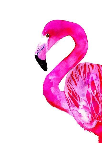 #flamingo #print #illustration