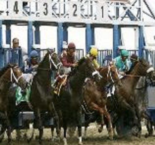 The Never Lose Horse racing System by paul coleman. $1.16. 2 pages. The never lose pro racing plan                            Show more                               Show less