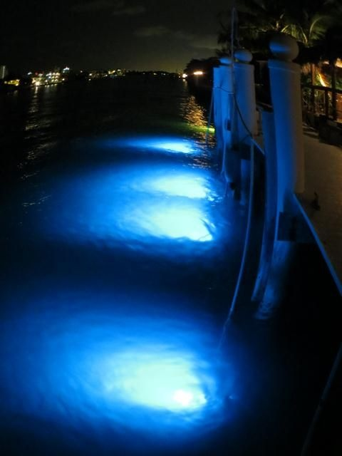 17 best ideas about boat lights on pinterest | pontoon boats, boat, Reel Combo