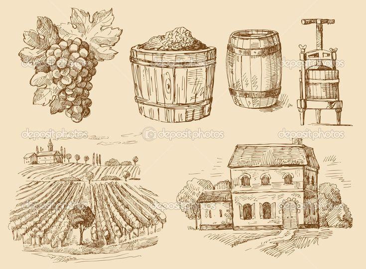 Szőlő-eredeti kézzel rajzolt gyűjtemény - Stock Illustration: 9983051