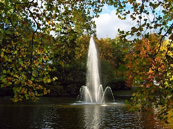 Autumn mood at the idyllic park pond in Bad Schwalbach - Germany. The high fountain glows in the evening sun.