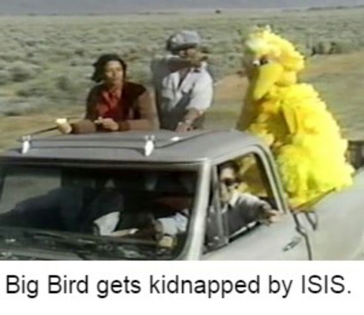 Big Bird Meme | PROTIP: Press the ← and → keys to navigate the gallery, 'g' to ...