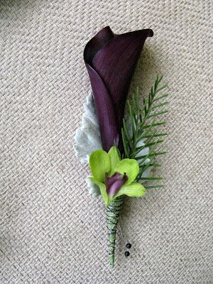 Eggplant calla lily boutonniere with an orchid and a spring of evergreen. Photo: Sprout.