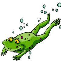 Al igual que el cuerpo de la rana, nuestra mente empresarial se va acomodando al agua cada vez más caliente.