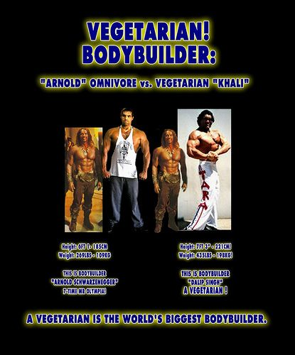 Cool Vegan Bodybuilding Diet images - http://weightlossdietstart.com/cool-vegan-bodybuilding-diet-images.html
