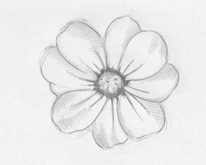 1001 Ideas De Dibujos De Flores Faciles Y Bonitos Flores Faciles De Dibujar Dibujos Romanticos Sencillos Flores Para Dibujar