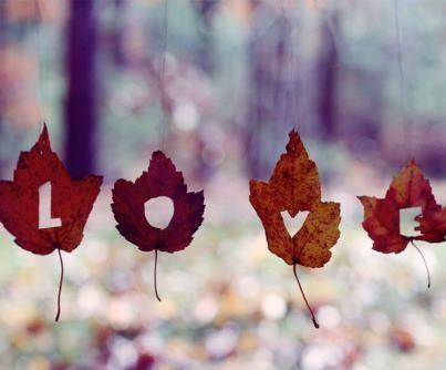 LOVE écrit sur feuilles séchées